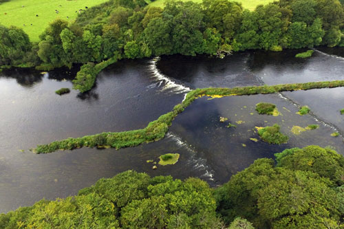 Shannon Flood Risk Group planning strategic maintenance works