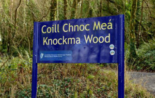 Additional Walking trail at Knockma open to the public