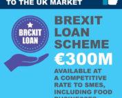 Brexit loan scheme