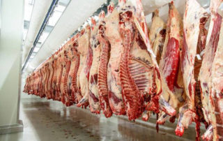 New regime on beef trimming
