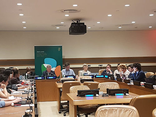 REPRESENTING IRELAND AT THE UNITED NATIONS HIGH LEVEL POLITICAL FORUM