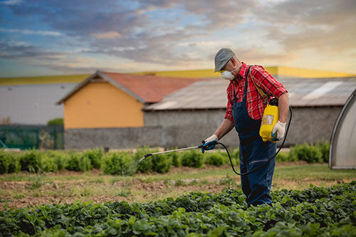 Think twice about pesticide use