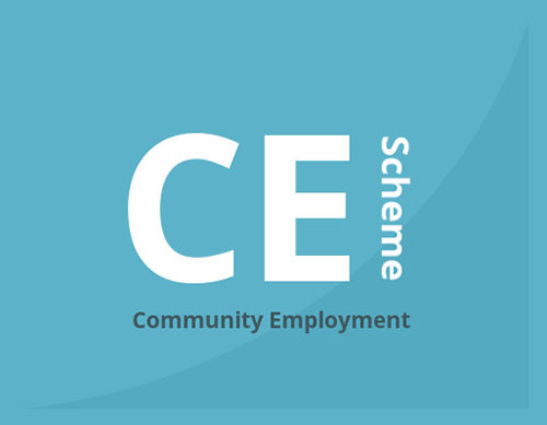 Calls on the Government to finalise negotiations on pensions entitlement for Community Employment Supervisors